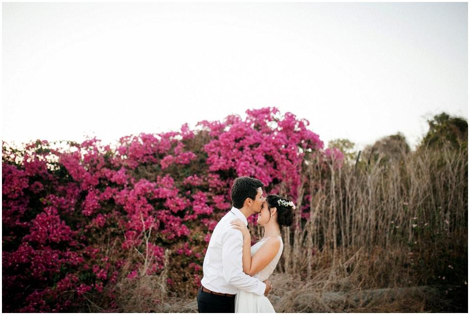 Gamba Photographers